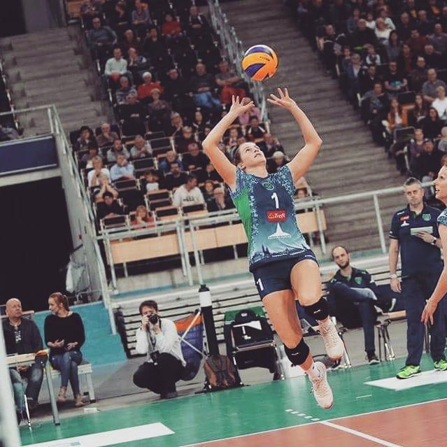 kép: treflproxima.pl